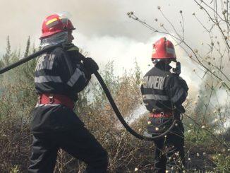 Incendiu de vegetație în Mineri, Tulcea. FOTO ISU Delta