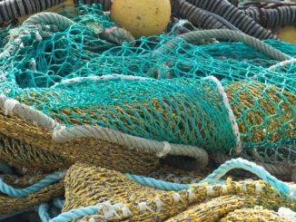 Plase de pescuit