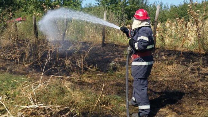 Incendiu de vegetația la Visterna. FOTO ISU Delta