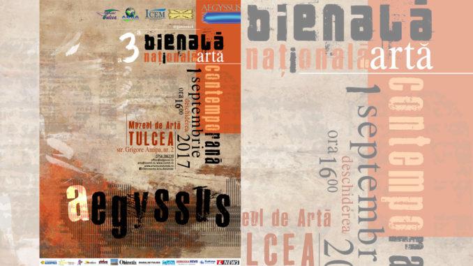 Bienala de artă, la Tulcea