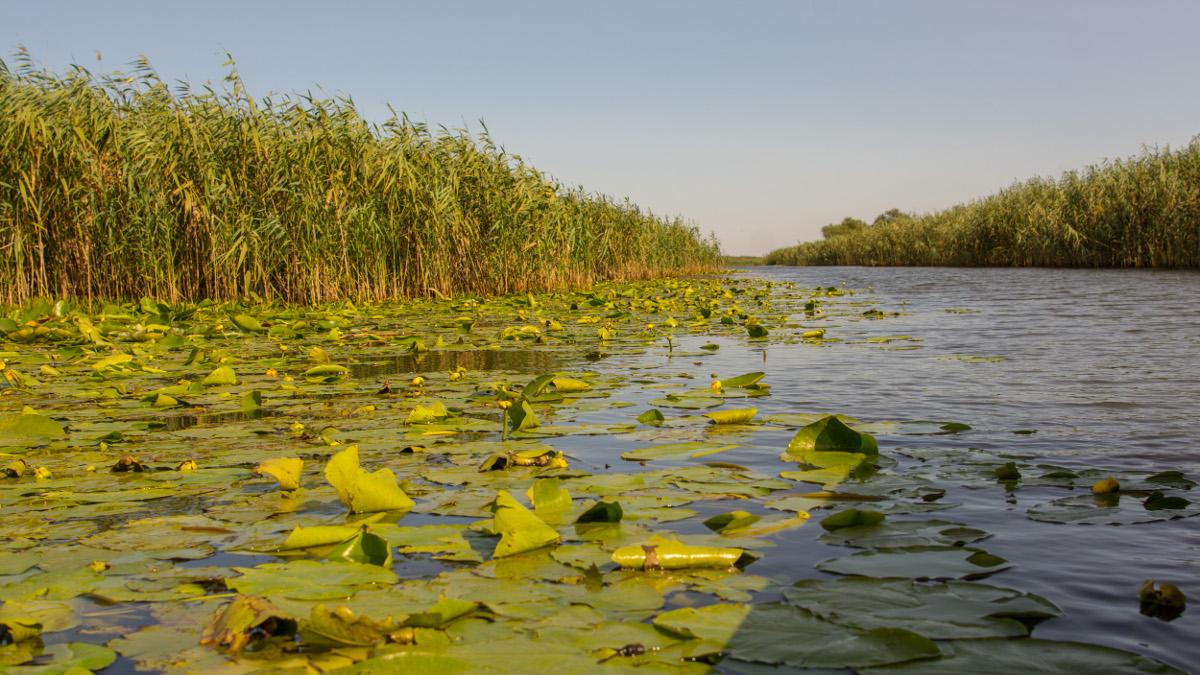 delta dunarii (1)